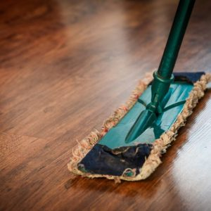 Making Your Home More Environmentally Friendly