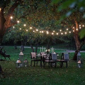 Throw the Perfect Backyard Garden Party